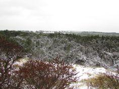 Sne i 2015