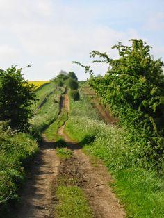 Cotswold footpath along a Roman Road - Ryknild Street