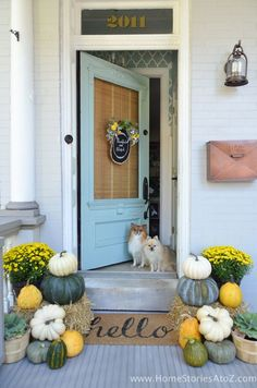 Oh sweet puppies, you had me at hello! Welcome everyone to our yellow and green fall porch! I'm so glad you stopped by. Pull up a rocker, a pumpkin-spiced something or another, and feel free to take a look around. I'm glad you stopped by! Every season, my Front Door Decor, Front Porch, Thanksgiving Decorations, Fall Door Decorations For Home, Thanksgiving Stories, House Decorations, Thanksgiving Crafts, Holiday Decor, House With Porch