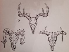 Biro drawings Sheep skull Cow skull Deer skull