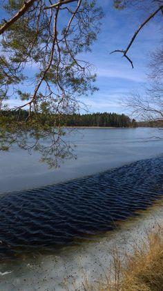 Liesjärven kansallispuisto. Liesjärvi National Park, Finland