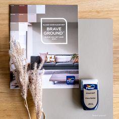 Brave, Dog Grooming Styles, Magazine Rack, New Homes, Van, Cabinet, Storage, Furniture, Home Decor