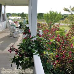 Creative Country Mom: First Impressions --- Blooms At The Front Walkway