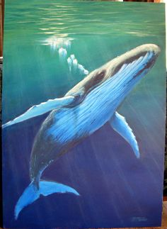 Humpback whale, acrylic painting by Barbara Mills @ a workshop with Mark Waller, , Lennox Head NSW