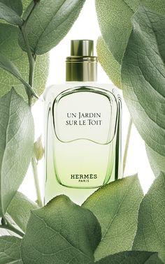Un Jardin Sur Le Toit di Hermes è una fragranza del gruppo Aromatico Fruttato da donna e da uomo. Un Jardin Sur Le Toit è stato lanciato sul mercato nel 2011. Il Naso di questa fragranza è Jean-Claude Ellena. La fragranza contiene note di Erba, Mela Rossa, Pera, Rosa, Magnolia e Rosmarino.