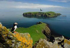 Isole Shetland, Scozia