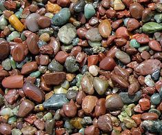 Identify 44 of the most common igneous, sedimentary and metamorphic rock types with this handy rock identification chart. Minerals And Gemstones, Rocks And Minerals, Rock Identification Chart, Mushroom Identification, How To Identify Rocks, Jasper Rock, Rock Tumbling, Earth Pigments, Igneous Rock
