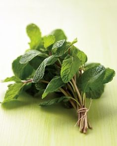 Helpful Tips for Growing Peppermint: