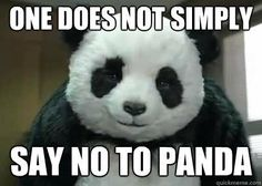 30 of The Funniest And Cutest Panda-Memes on The Web