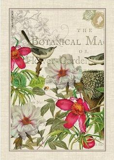 Unas bonitas postales florales que espero os gusten y les deis uso   Enlace:  http://www.ebay.co.uk/itm/Michel-Design-Works-Kitchen-Dining-H...