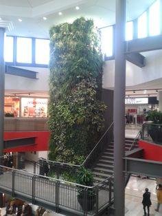 Realizzazione verde verticale - Ipercoop Cantù (CO)