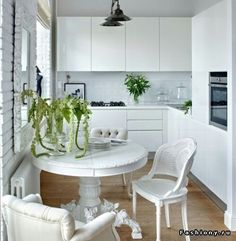 White tiny kitchen