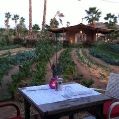 Flora Farms table for two. A farm-to-table restaurant & organic farm in Los Cabos, Mexico.