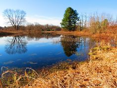 A tranquil country wetland scene in Winchester, New Hampshire on a beautiful late April, Spring morning in New England.