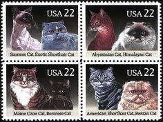 ,I have these stamps, bought them in Florida in 1988 on my first and so far, only trip across the ocean (from Sweden)