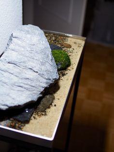 RoomGardens Wasserpflanzenbiotop