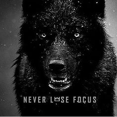 NEVER LOSE FOCUS! BrightTeam fitness Hustle;motivation;inspiration; cashMoney; determination; fitnes; fitness; motivation; bright; yourself; inspire
