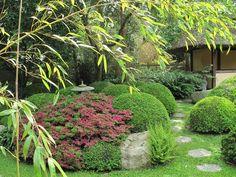 japansk inspirerade trädgårdar - Sök på Google