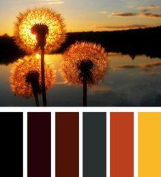 colores interiores modernos, esquemas de color naranja
