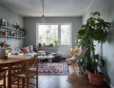 Vardagsrum med gröna växter, mönstrad matta och string-hyllor.