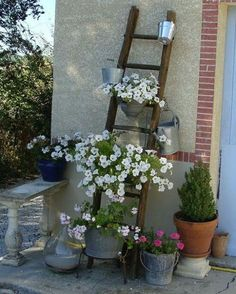 Hottest Pics herb garden ladder Suggestions Herbal plants can easily be cultivated in your own home providing you ensure that you get started down the pro. Herb Garden Design, Diy Garden Decor, Garden Art, Garden Cottage, Garden Types, Garden Decorations, Small Gardens, Outdoor Gardens, Old Wooden Ladders
