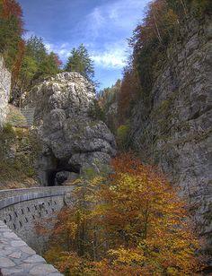 Autumn in the Gorges de la Bourne, Rhone-Alpes, France