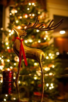 Gold Reindeer in front of Christmas Tree