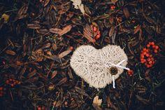 Осенний поцелуй: свадьба Ольги и Армана https://weddywood.ru/?p=75299