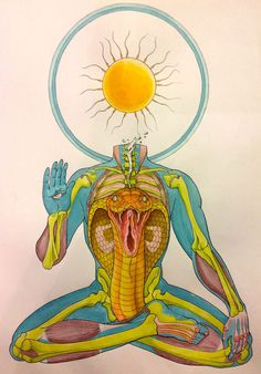 Comic artist Kate (Allen) Lacour created these symmetrical anatomical diagrams,rendered in pen and ink and painted in food coloring. This series comes as a side project to her popular comics, one of which, called Milk Teeth,features anatomical diagrams and wordless vignettes of mythical creatures.