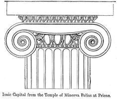 IonicCapitalPriene - Ionic order - Wikipedia, the free encyclopedia Architecture Concept Drawings, Colour Architecture, Gothic Architecture, Ancient Greek Art, Ancient Greece, Ionic Order, Roman Columns, Ancient Greek Architecture, Funny Tattoos