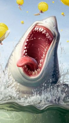 Funny Shark...   Yummy I love  it when it rains humans in the morning!   :)