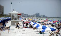 You don't need to fly 13-plus hours to the middle of the Pacific Ocean to feel the best beach in America under your toes — it's right here in the Tampa Bay area, according to Tri