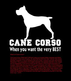 """What's a Cane Corso?"" - Breed Background Information"