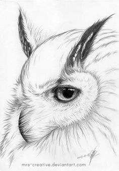 Snow owl by mrs-creative owl sketch, ap drawing, drawing ideas, animal Realistic Pencil Drawings, Pencil Art Drawings, Art Drawings Sketches, Animal Sketches, Animal Drawings, Snow Owl, Owl Tattoo Drawings, Owl Sketch, Owl Quilts