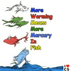 More Warming Means More Mercury In Fish