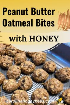 Cooking with honey, use this simple recipe to create a high energy nutritious snack #carolinahoneybees Cooking With Honey, Get Healthy, Healthy Eating, Oatmeal Bites, Peanut Butter Oatmeal, Nutritious Snacks, Honey Recipes, Eating Raw, Raw Honey