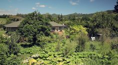 Beautiful permaculture farm grows in just three years