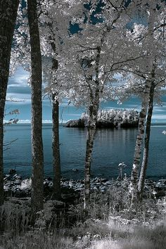 North shore scene, Minnesota, with a kiss of frost.  I can just feel the crisp, cool, invigorating fresh air.  #ONLYINMN   www.exploreminnesota.com  #exploremn