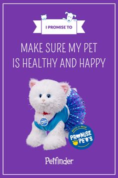 Build-A-Bear Promise Pets Promise #3: I promise to make sure my pet is happy and healthy.