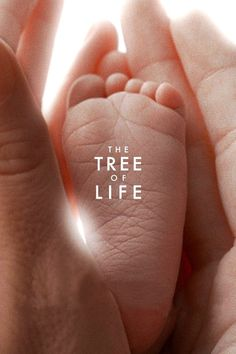 The Tree of Life (2011): I think that there are movies that people don't really understand, but they know that the director has never let them down before so they make all these lofty claims about how the movie is wonderful and an artistic masterpiece. But I find that, often, those movies--though they may look pretty--are pretentious and unnecessarily obtuse. This is one such movie. Where's the story? What is the story? Is there story?