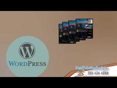 Wordpress developer dallas - (305) 434-4698