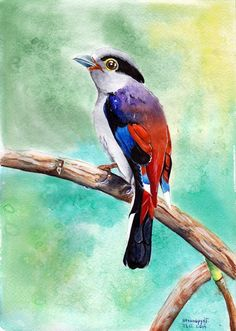 bird of paradise 21.12.2014 gouache watercolor watercolor paper A4 Art by Halyna Nechiporuk.