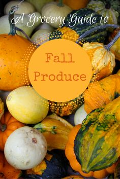 Fall is here! Learn what fruits and vegetables are in season and Rachael Ray's favorite recipes to accompany them.