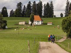 Transjurane – einmal durch den wilden Westen der Schweiz – In der Natur unterwegs Three Lakes, Golf Courses, Wild West, Tours, Alps, Switzerland, Nature, Travel, Law School