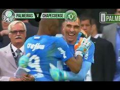 Um dos momentos mais emocionantes da história do Palmeiras....