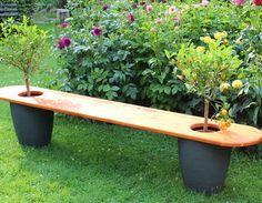 Gartenbank mit Bäumchen