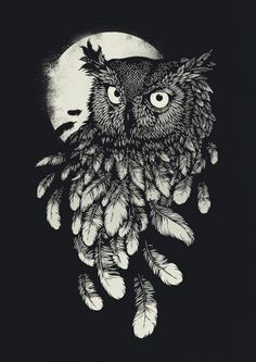 bird ink drawing - Google Search
