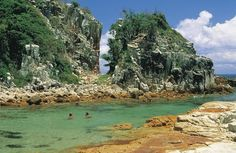 Explore the spectacular Forster and Taree region of the NSW North Coast. Discover surf beaches, great lakes and national parks. Find accommodation, houseboats & more. Tasmania, Australian Holidays, State Forest, North Coast, Australia Travel, Australia 2017, Gold Coast, Travel Inspiration, Travel Ideas