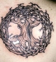 Do you want to investigate about Celtic tree tattoos? Learn more about the great Celtic tree tattoo designs. We are seeing that Celtic tattoo tree of life have become very popular choice amongst folks in recent years. Celtic Tattoo Meaning, Celtic Tattoo For Women, Celtic Tree Tattoos, Tribal Dragon Tattoos, Dragon Tattoos For Men, Oak Tree Tattoo, Viking Tattoos, Tattoos With Meaning, Tattoos For Guys