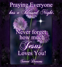 Praying Everyone Has A Blessed Night goodnight good night goodnight quotes goodnight quote goodnite goodnight quotes for friends goodnight quotes for family god bless goodnight quotes Good Night Friends, Good Night Wishes, Good Night Sweet Dreams, Good Morning Good Night, Night Time, Good Night Everyone, Morning Light, Good Night Greetings, Good Night Messages